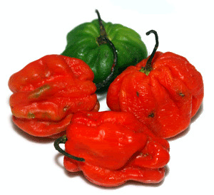 1-scotch_bonnet