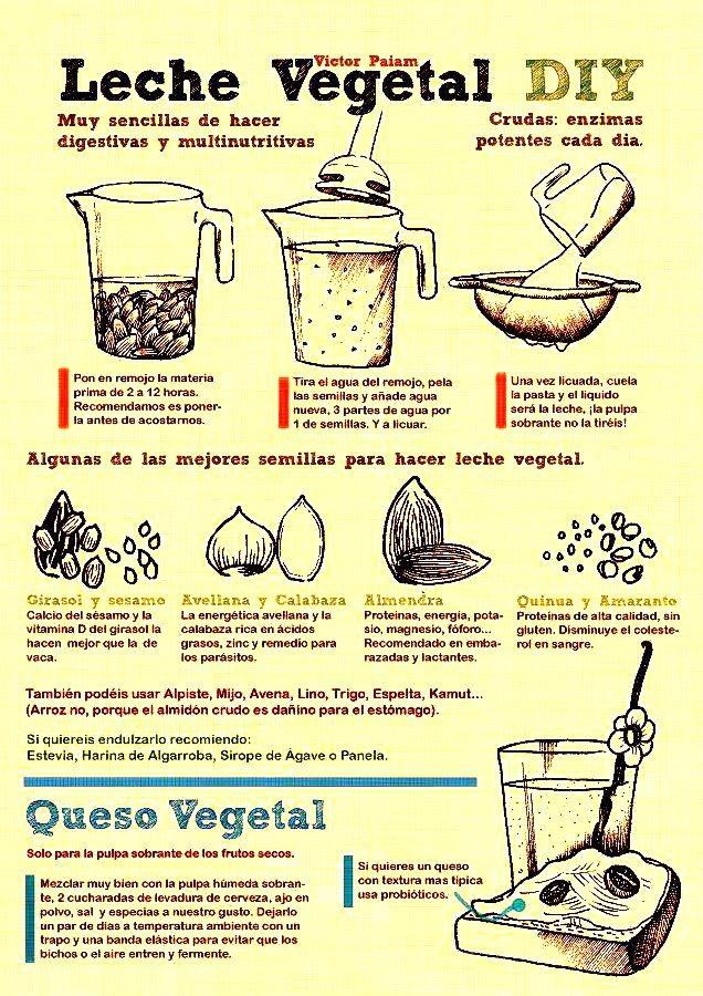 Calendar Feb : Tutorial de leches y quesos vegetales sabores bolivia